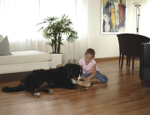 Kombination von Fußbodenheizung und Parkett für Wohnkomfort – Bloß keine kalten Füße
